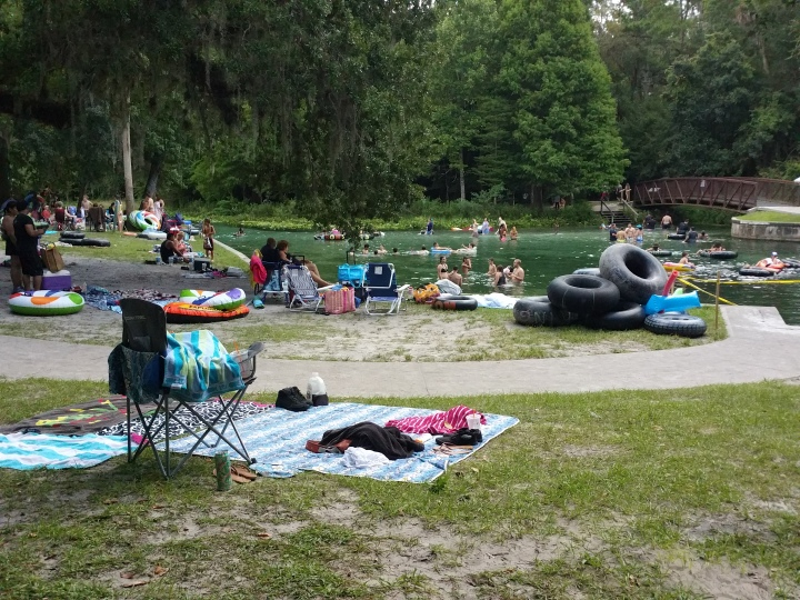 rock springs, Apopka, florida, springs, swimming, nature, picnic, Kelly park