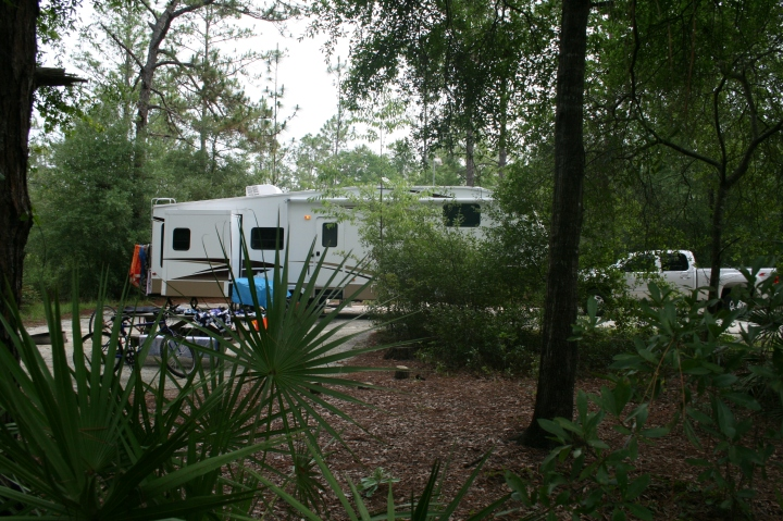 Silver River SP (our site view 3)
