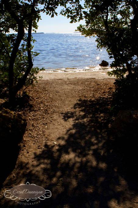 images-horse shoe crab-island-pine island-landscapes-fishig boat-boat-0079
