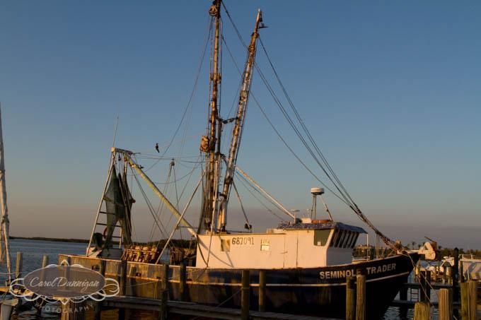 images-horse shoe crab-island-pine island-landscapes-fishig boat-boat-0109