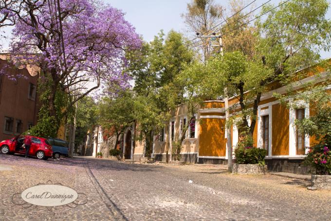 Mexico2090