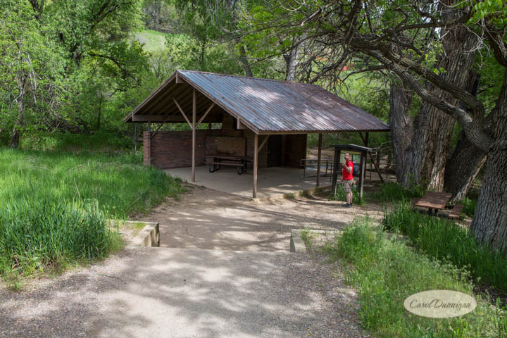 carol dunnigan photography, images, colorado, photographer, photography, boulder, hiking, places to go, outdoors, trails, centennial trail head, canon, canon 5d mark iii, Mt. Sanitas-1