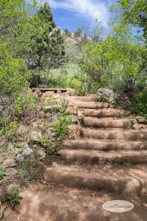 carol dunnigan photography, images, colorado, photographer, photography, boulder, hiking, places to go, outdoors, trails, centennial trail head, canon, canon 5d mark iii, Mt. Sanitas-2