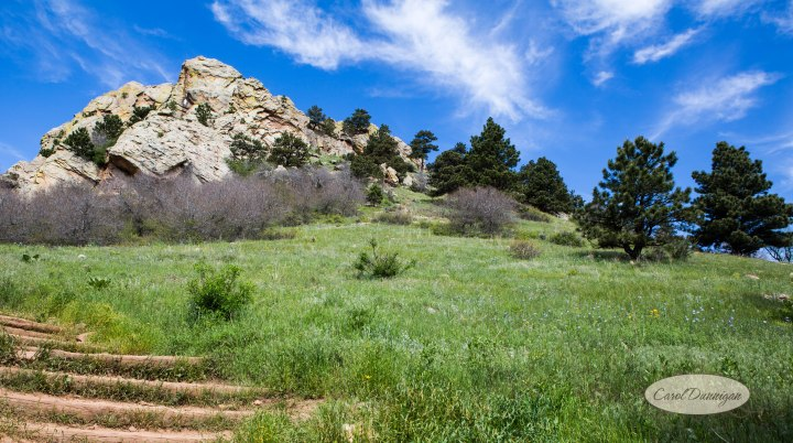 carol dunnigan photography, images, colorado, photographer, photography, boulder, hiking, places to go, outdoors, trails, centennial trail head, canon, canon 5d mark iii, Mt. Sanitas-3