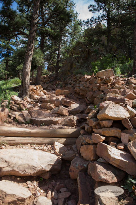 carol dunnigan photography, images, colorado, photographer, photography, boulder, hiking, places to go, outdoors, trails, centennial trail head, canon, canon 5d mark iii, Mt. Sanitas-4