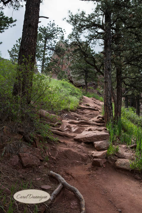 carol dunnigan photography, images, colorado, photographer, photography, boulder, hiking, places to go, outdoors, trails, centennial trail head, red rocks trail, canon, canon 5d mark iii-4