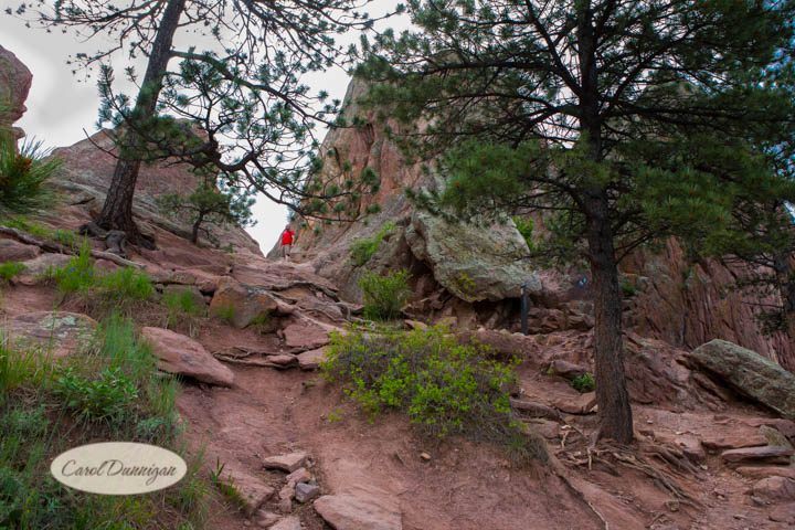 carol dunnigan photography, images, colorado, photographer, photography, boulder, hiking, places to go, outdoors, trails, centennial trail head, red rocks trail, canon, canon 5d mark iii-5