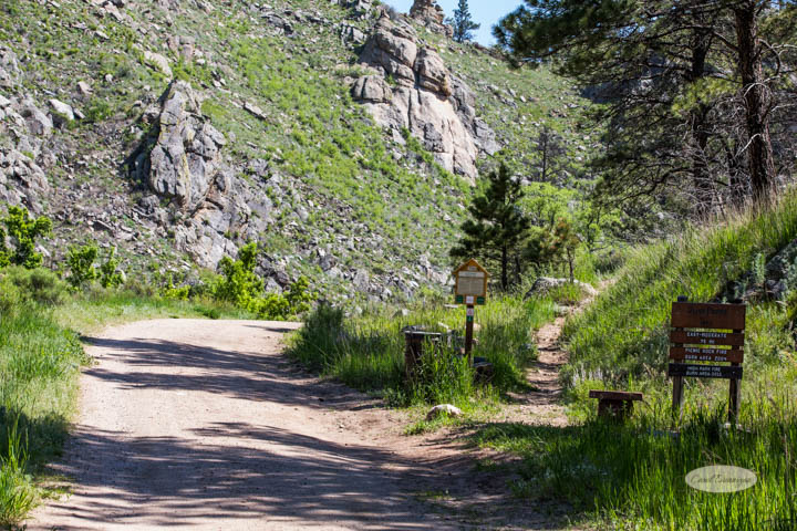 fort collins, colorado, poudre canyon, images, photography, carol dunnigan photography, gateway natural area, nature, places to go, picnic, hiking, trails, rafting, tubing, canoeing, kayaking, photography (13 of 24)