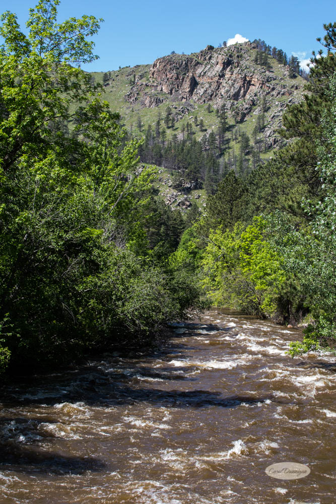 fort collins, colorado, poudre canyon, images, photography, carol dunnigan photography, gateway natural area, nature, places to go, picnic, hiking, trails, rafting, tubing, canoeing, kayaking, photography (7 of 24)