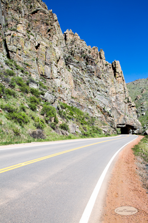 carol dunnigan photography, images, photography, colorado, poudre canyon, cameron pass, nature, outdoors, mountains, road, tunnel