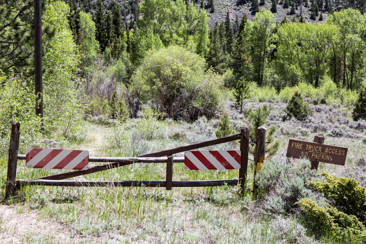 carol dunnigan photography, images, photography, colorado, poudre canyon, cameron pass, nature, outdoors, mountains-22