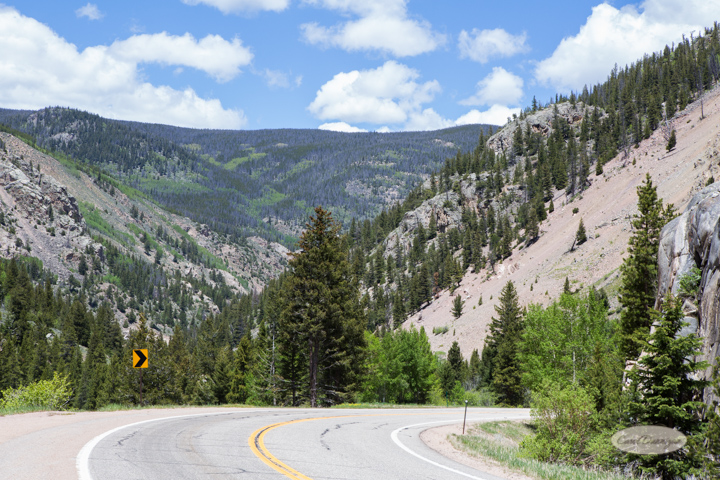 carol dunnigan photography, images, photography, colorado, poudre canyon, cameron pass, nature, outdoors, mountains-34