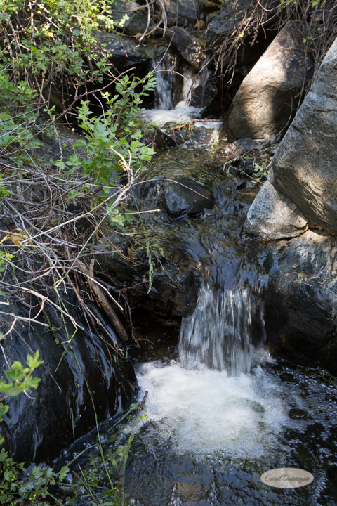 lory state park, hiking, images, photography, nature, outdoors, places to go, things to do, waterfall, trails-10