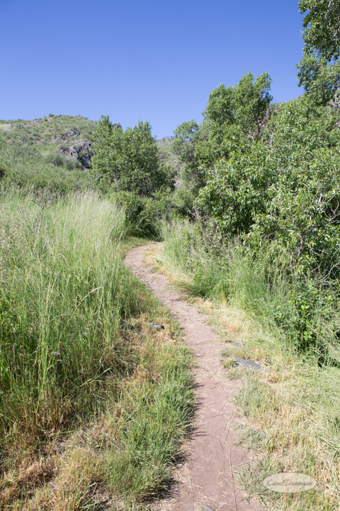 lory state park, hiking, images, photography, nature, outdoors, places to go, things to do, waterfall, trails-2