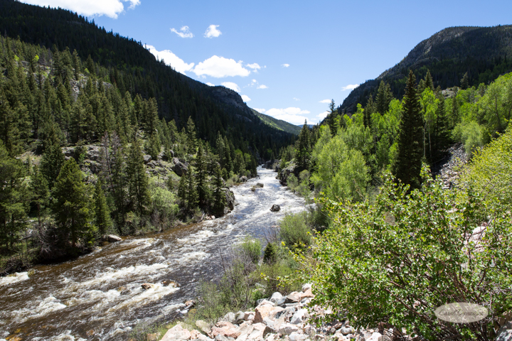 poudre canyon, cameron pass, colorado, mountains, poudre river, images, photography, mountains, carol dunnigan photography-29