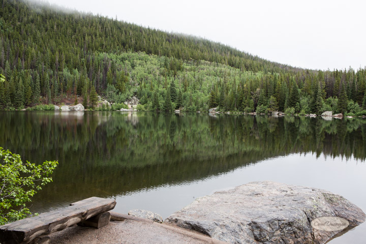 rocky mountain national park, images, photography, mountains, carol dunnigan photography-30