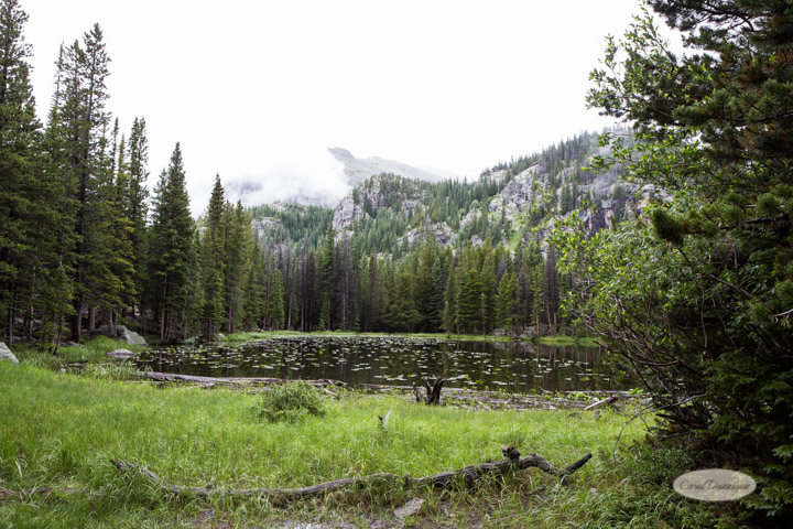 rocky mountain national park, images, photography, mountains, carol dunnigan photography-54