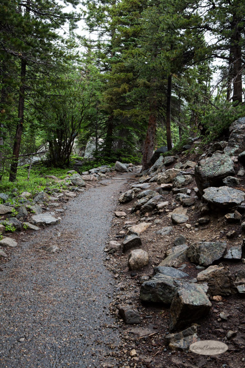rocky mountain national park, images, photography, mountains, carol dunnigan photography-61