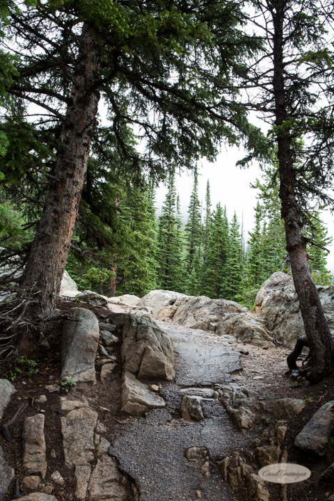 rocky mountain national park, images, photography, mountains, carol dunnigan photography-62