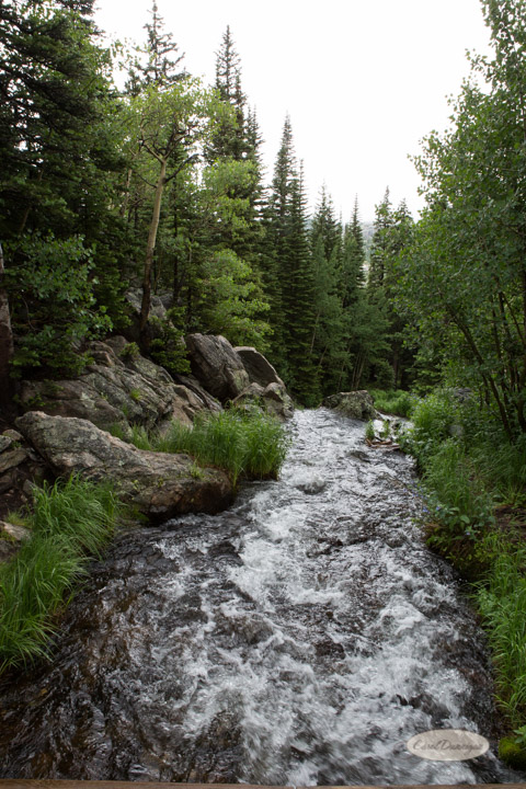 rocky mountain national park, images, photography, mountains, carol dunnigan photography-77
