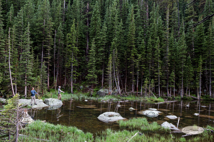 rocky mountain national park, images, photography, mountains, carol dunnigan photography-89
