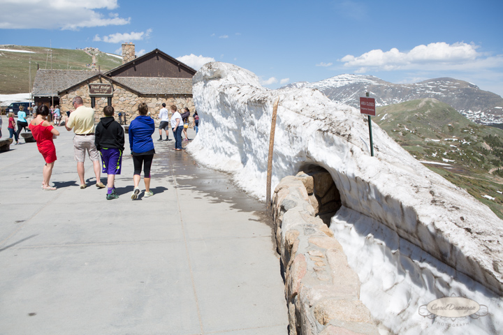 rocky mountain national park, trail ridge road, images, photography, mountains, carol dunnigan photography-7