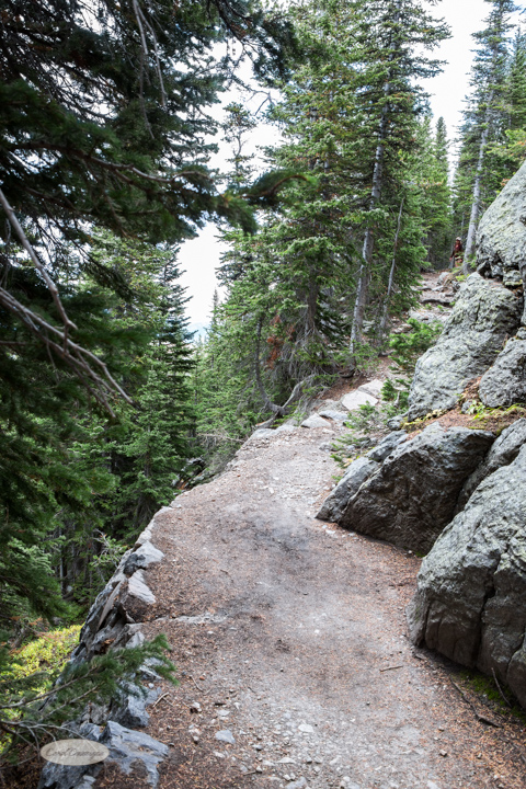 Trail on the edge!