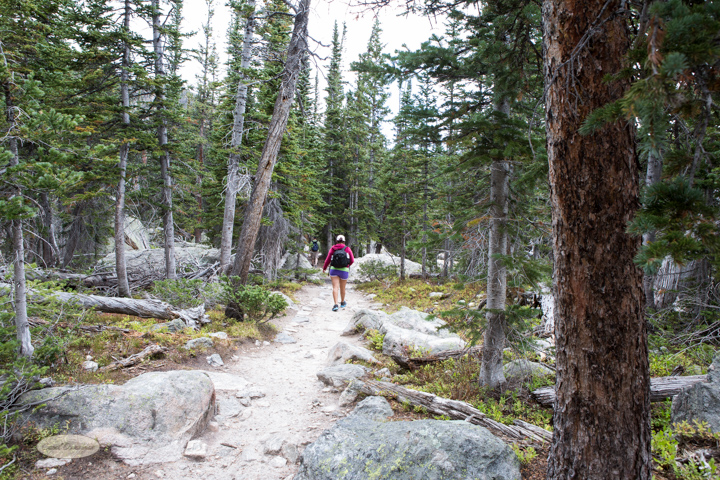 estes park, bear lake trailhead, lake haiyaha, dream lake, colorado, hiking, images, photography, carol dunnigan photography, rocky mountain national park, trails-6675