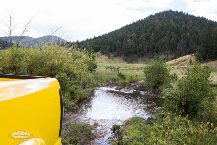 roosevelt national forest, offroading, offroad, red feather lakes, images, photography, nature, colorado, streams, forest, foothills, mountains-20
