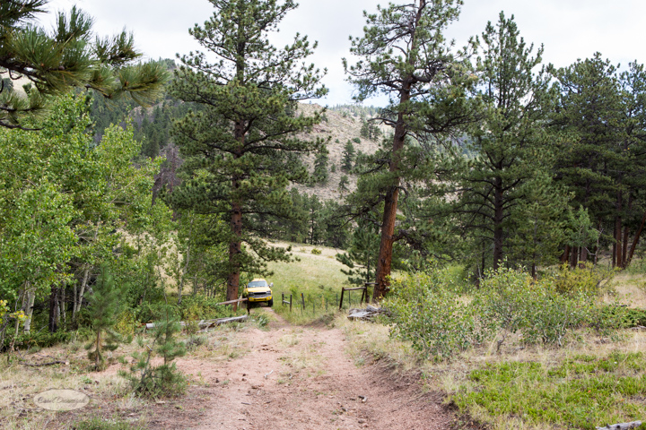 roosevelt national forest, offroading, offroad, red feather lakes, images, photography, nature, colorado, streams, forest, foothills, mountains-35
