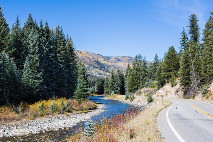 carol dunnigan photography, colorado, fall, autumn, images, photography, mountains, travel, white river national forest-7282