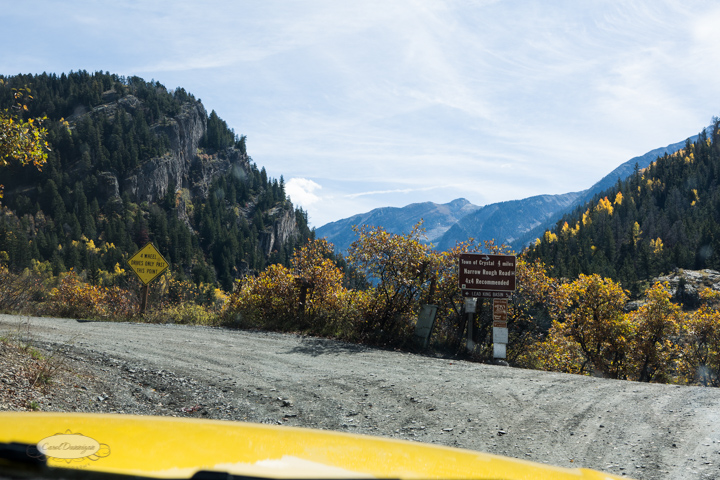 carol dunnigan photography, colorado, fall, autumn, images, photography, mountains, travel, white river national forest, lead king basin loop, offroading, off-road, offroading-7366