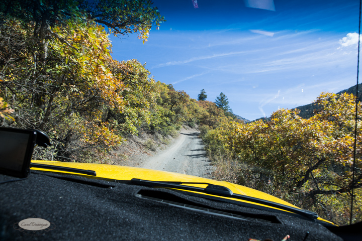 carol dunnigan photography, colorado, fall, autumn, images, photography, mountains, travel, white river national forest, lead king basin loop, offroading, off-road, offroading-7372