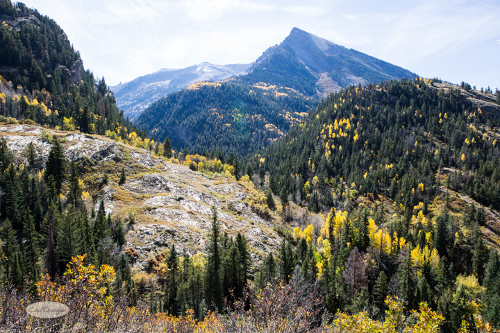 carol dunnigan photography, colorado, fall, autumn, images, photography, mountains, travel, white river national forest, lead king basin loop, offroading, off-road, offroading-7373