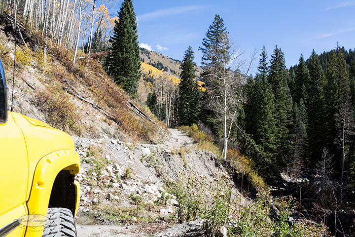 carol dunnigan photography, colorado, fall, autumn, images, photography, mountains, travel, white river national forest, lead king basin loop, offroading, off-road, offroading-7376