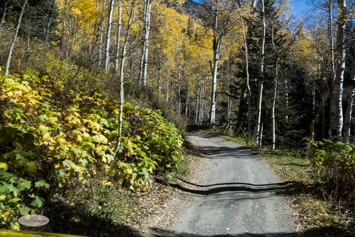 carol dunnigan photography, colorado, fall, autumn, images, photography, mountains, travel, white river national forest, lead king basin loop, offroading, off-road, offroading-7385