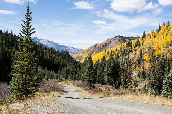 carol dunnigan photography, colorado, fall, autumn, images, photography, mountains, travel, white river national forest, lead king basin loop, offroading, off-road, offroading-7387