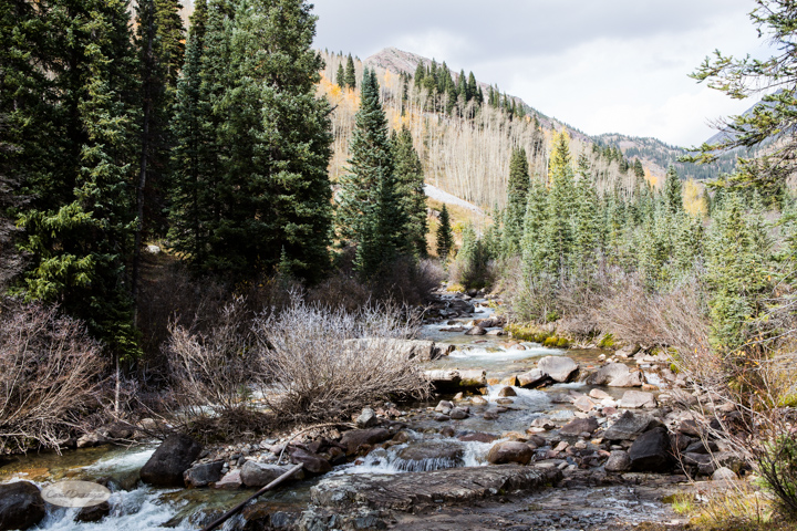 carol dunnigan photography, colorado, fall, autumn, images, photography, mountains, travel, white river national forest, lead king basin loop, offroading, off-road, offroading-7476