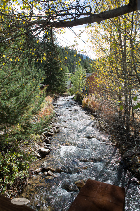 carol dunnigan photography, colorado, georgetown , fall, autumn, images, photography, mountains, travel-12