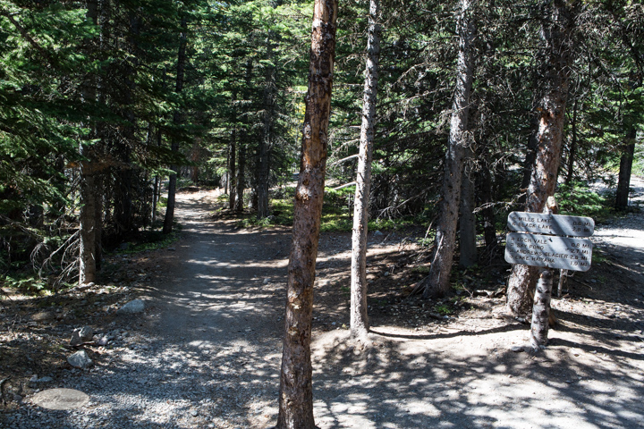 estes park, colorado, rocky mountain national park, carol dunnigan photography, images, photography, hiking, trails, glacier gorge trailhead, mills lake, alberta falls-22