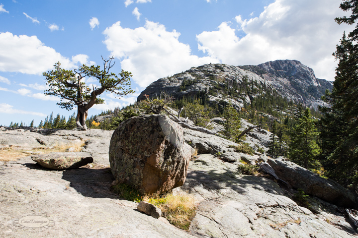estes park, colorado, rocky mountain national park, carol dunnigan photography, images, photography, hiking, trails, glacier gorge trailhead, mills lake, alberta falls-25