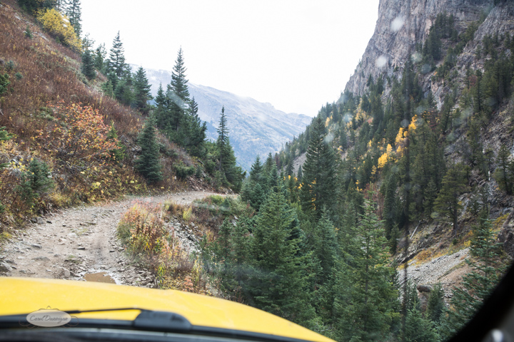 carol dunnigan photography, colorado, fall, autumn, images, photography, mountains, travel, white river national forest, lead king basin loop, offroading, off-road, offroading, lizard lake, crystal city-7503