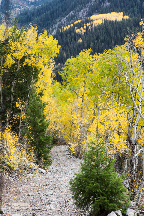carol dunnigan photography, colorado, fall, autumn, images, photography, mountains, travel, white river national forest, lead king basin loop, offroading, off-road, offroading, lizard lake, crystal city-7526