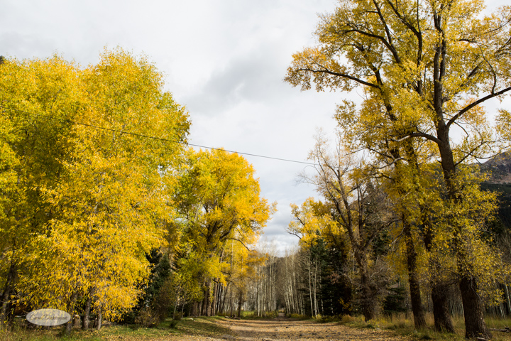 carol dunnigan photography, colorado, fall, autumn, images, photography, mountains, travel, white river national forest, lead king basin loop, offroading, off-road, offroading, lizard lake, crystal city-7533