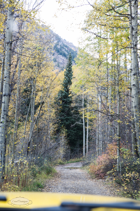 carol dunnigan photography, colorado, fall, autumn, images, photography, mountains, travel, white river national forest, lead king basin loop, offroading, off-road, offroading, lizard lake, crystal city-7565