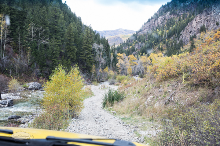 carol dunnigan photography, colorado, fall, autumn, images, photography, mountains, travel, white river national forest, lead king basin loop, offroading, off-road, offroading, lizard lake, crystal city-7567