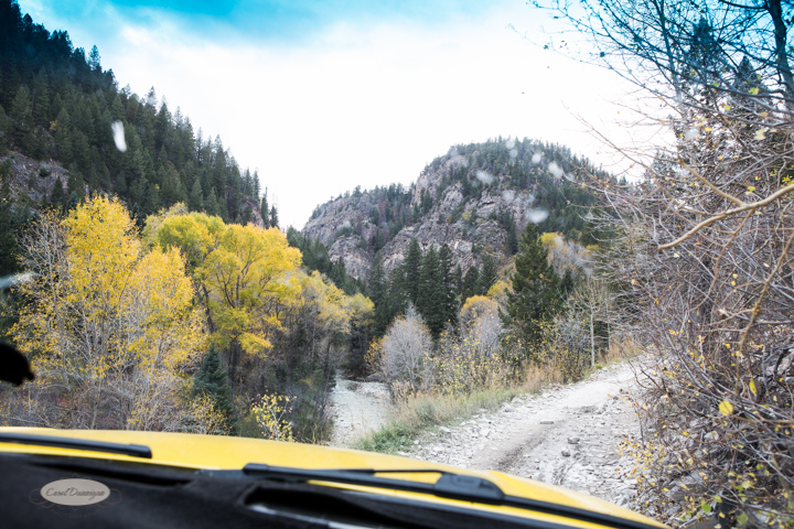 carol dunnigan photography, colorado, fall, autumn, images, photography, mountains, travel, white river national forest, lead king basin loop, offroading, off-road, offroading, lizard lake, crystal city-7568