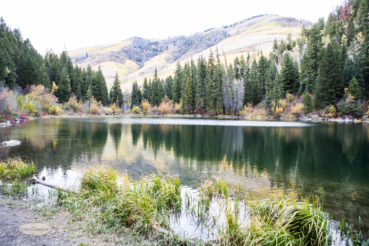 carol dunnigan photography, colorado, fall, autumn, images, photography, mountains, travel, white river national forest, lead king basin loop, offroading, off-road, offroading, lizard lake, crystal city-7570