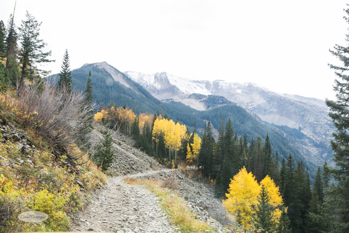 carol dunnigan photography, colorado, fall, autumn, images, photography, mountains, travel, white river national forest, lead king basin loop, offroading, off-road, offroading, lizard lake, crystal city-7511