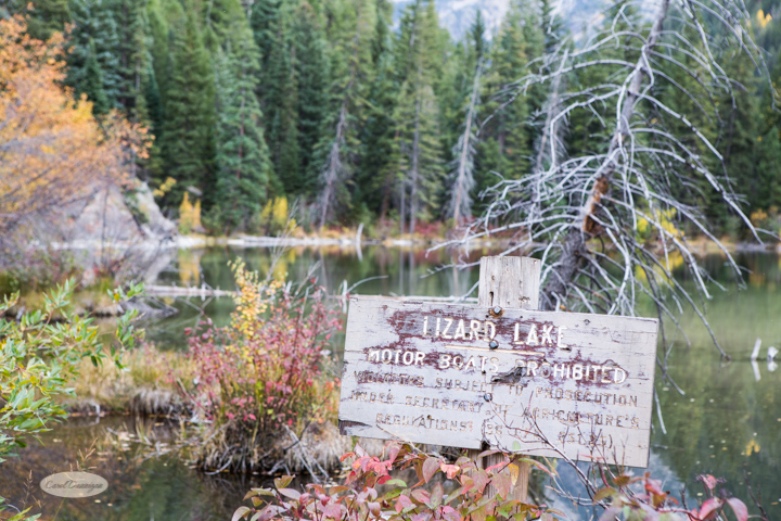 carol dunnigan photography, colorado, fall, autumn, images, photography, mountains, travel, white river national forest, lead king basin loop, offroading, off-road, offroading, lizard lake, crystal city-7576